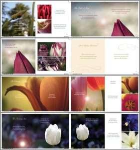 book design sunshine coast - coffee table book